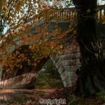 Ian Simpson: Sun light under the bridge  Equipment: Canon 650D & Sigma 17-50mm