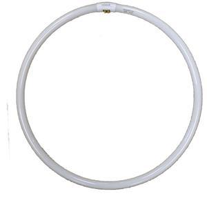 Dorr Replacement Bulb for SL-45 Ring Light | 75 Watt | 5300K Colour Temperature