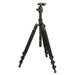Dorr Pro Black 1.1 Tripod with Ball Head