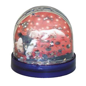Dorr Photo Snow Globe with Silver Stars