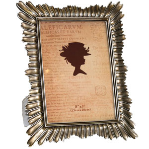 Andenne Pewter 7x5 Photo Frame