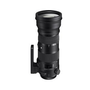 Sigma 150-600mm F5-6.3 Sport DG OS HSM Lens - Nikon Fit